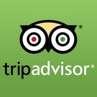 Trip-Advisor-logo200